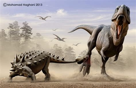 Who Would Win In A Fight Between An Ankylosaurus And A T