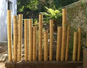 Gros Bambou Deco : cl ture en bambou pour une touche orientale dans le jardin ~ Teatrodelosmanantiales.com Idées de Décoration