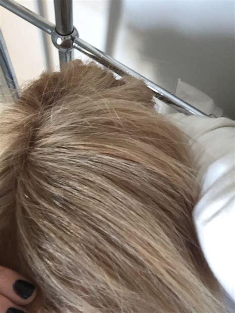 wella koleston  lightest ash violet blonde mixed