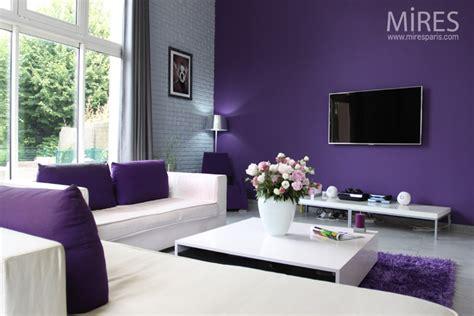 deco chambre gris et mauve decoration salon gris et mauve