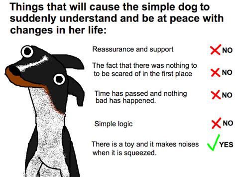 Hyperbole And A Half Dogs Dont Understand Basic Concepts
