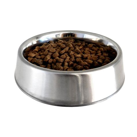 ant  stainless bowl  pets