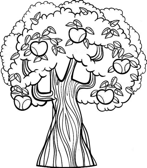 HD wallpapers jungle tree coloring page