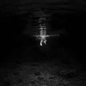 Dark, Brooding Underwater Photos of Marine Animals ...