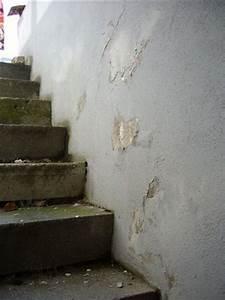 Feuchtigkeit Im Haus : feuchtigkeit im haus sch den erkennen dekorieren bei das ~ Lizthompson.info Haus und Dekorationen