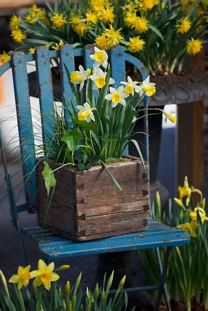 Wooden Box Made Great Planter For Spring Flowers Have