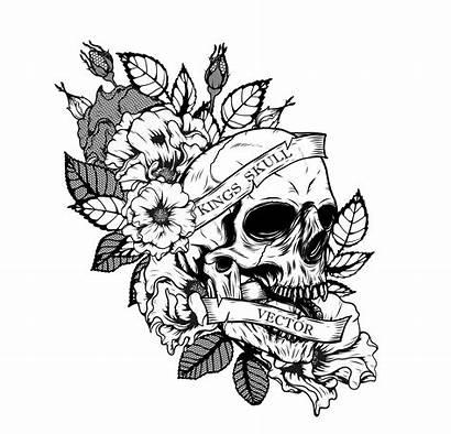 Skull Tattoo Drawing Vector Hand Chrysanthemum Flower
