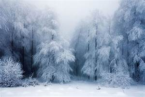 Heart Touching Magical Snowy Landscapes...