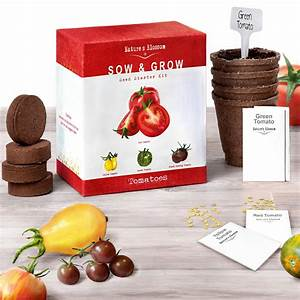 Grow 4 Types Of Tomatoes From Seed Indoor Germination Kit