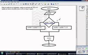 Diagrama De Flujo  Estructura De Decisi U00f3n Doble
