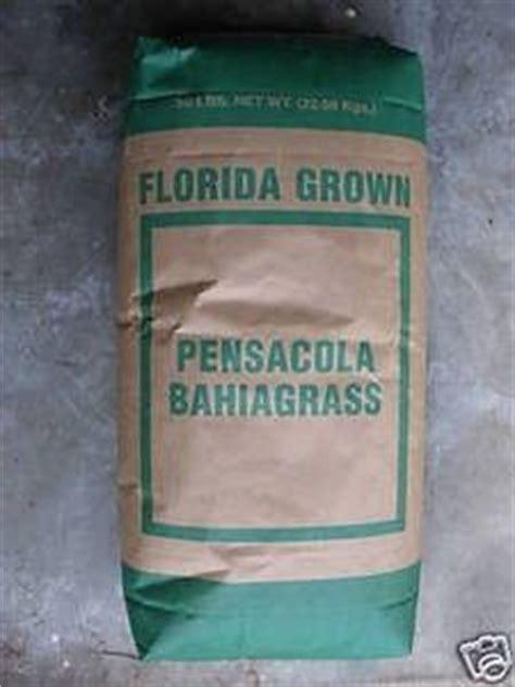 pensacola bahia grass seed  lbs