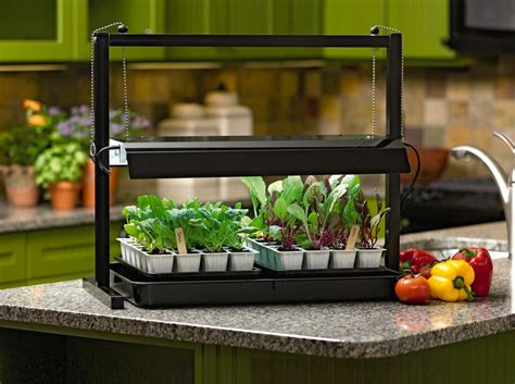 kitchen grow lights grow lights can make you and your plants happier your 1785