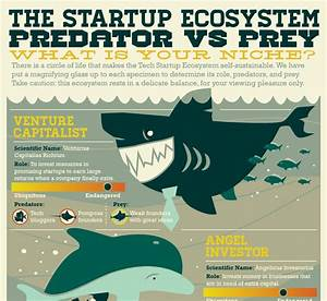 Startup Ecosystem  Predators Vs  Prey
