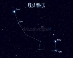 Ursa Minor  Little Dipper  Constellation Stock