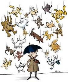 raining cats and dogs picture idioms raining cats and dogs wil s