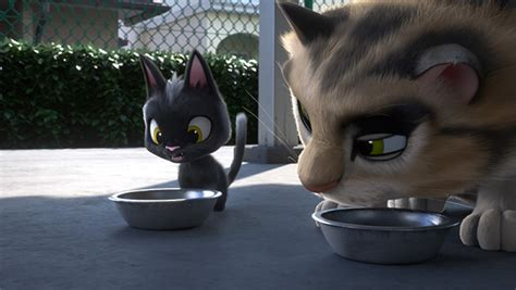 Gatos Anime De Callejeo