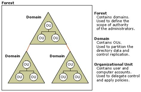 Active Directory Logical Structure Background Information. Online Biology Classes For College Credit. Rn Diploma Programs Online Free Magento Theme. Private Adoption Massachusetts. Dental Implants Las Vegas It Computer Service. S Corporation Or C Corporation. Spray Foam Insulation Iowa Red Hat Games. Divorce Lawyer Atlanta Georgia. How Does Debt Settlement Affect Credit