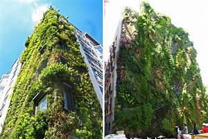 Vertikale Gärten Selber Machen : vertikale g rten gr ne pflanzenw nde gegen alltagsgrau bonnyprints magazin ~ Bigdaddyawards.com Haus und Dekorationen