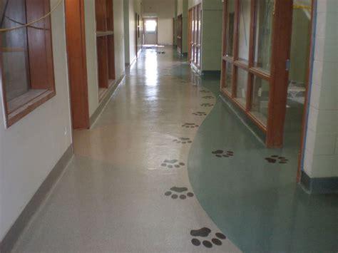 epoxy flooring veterinary sunbelt flooring animal housing