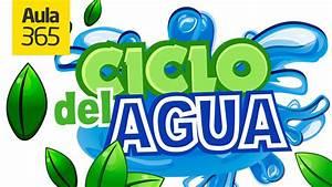 El Ciclo del Agua y sus Estados Videos Educativos para Niños YouTube