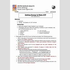 Cellular Respiration Breaking Down Energy Worksheet » Afterschool Team Activity Club Worksheets