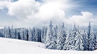 2 winter tree and snow free desktop wallpapers for widescreen hd and mobile