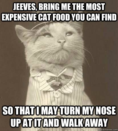 Bring Me Food Meme - free sle can of halo cat food free sles by mail no catch no surveys