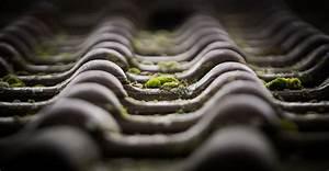 Traitement Anti Mousse : traitement hydrofuge color de toiture devis gratuit ~ Farleysfitness.com Idées de Décoration