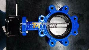 Manual Op Lug Type Worm Gear Resilient Seated Butterfly