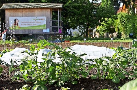 Garten Kaufen Stuttgart Möhringen by Das Ende Im Schreiber Garten Sechs Monate Lang Ackerlust
