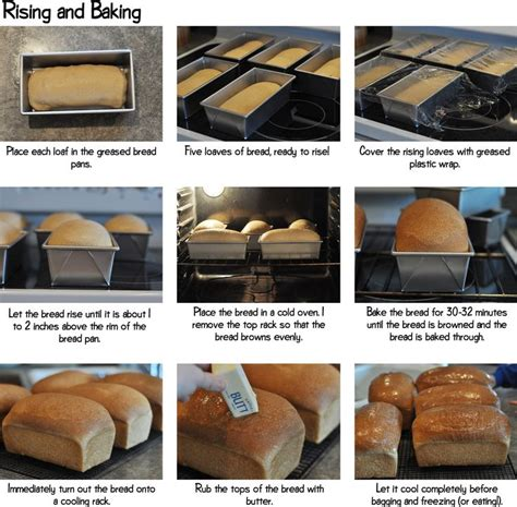 bread with yeast step by step 17 best images about food bosch recipies on pinterest recipe for bread pizza and blenders