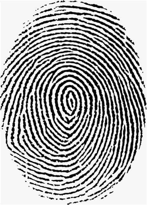 Fingerprint Clipart Fingerprint Picture Pattern Lines Fingerprint