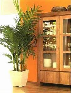 Cómo decorar con plantas artificiales tu casa Tip Del