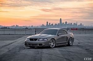 """2003 Ford Mustang Cobra """"Terminator"""" - CCW SP505 Forged Wheels"""