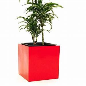 Blumenkübel Fiberglas Aussen : blumenk bel fiberglas quadratisch 38x38x38cm hochglanz rot ~ Sanjose-hotels-ca.com Haus und Dekorationen