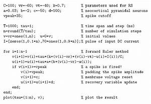 Matlab Code Example Implementation Of Izhikevich U0026 39 S Simple