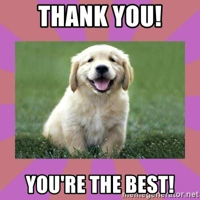 Your The Best Meme - thank you you re the best a level puppy meme generator