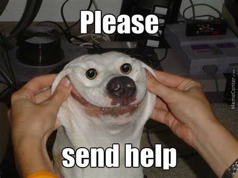 Send Memes - please send help by larigo meme center