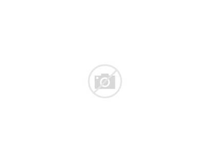 Brochure Fold Tri Template Professional Rainbow Corporate
