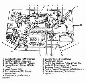 07 Hyundai Tiburon Wiring Diagram  Hyundai  Auto Wiring Diagram