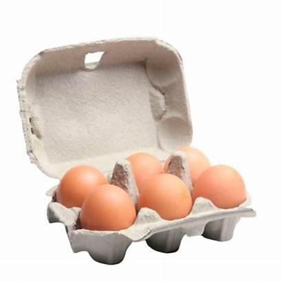 Eggs Half Dozen