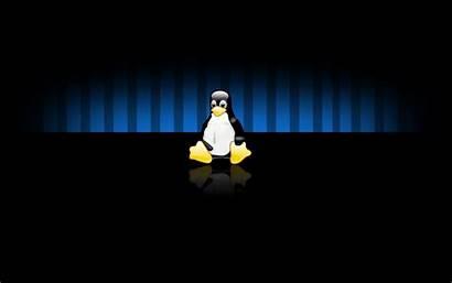 Linux Wallpapers Widescreen Desktop Tux Background Command