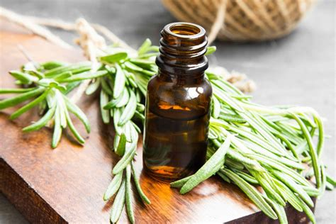 health benefits  thyme oil