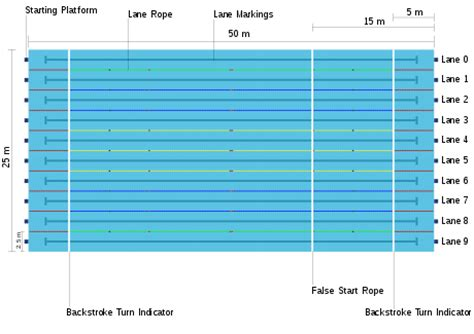 swimming pool dimensions olympic size swimming pool