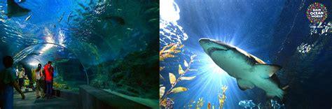 sea aquarium entrance fee skegness sea bangkok world in bangkok thailand ticket e ticket siam world ticket price