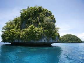 Palau is rated as one of the world's best diving destinations by scuba ... Palau