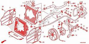 Honda Foreman 500 Parts Diagram