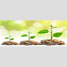 Shifting My Money Mindset From Earnings Obsession To Growing Wealth  Daily Capital