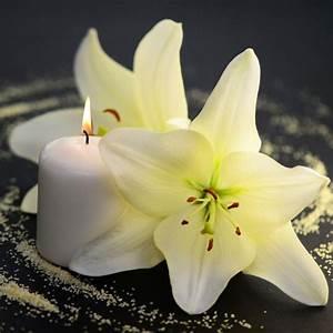 Trauer Blumen Bilder : danksagung traueranzeige danksagungstexte als beispel ~ Frokenaadalensverden.com Haus und Dekorationen