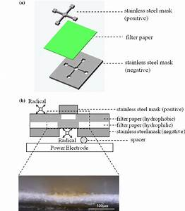 Schematic Of The Fabrication Process Of The Paperbased